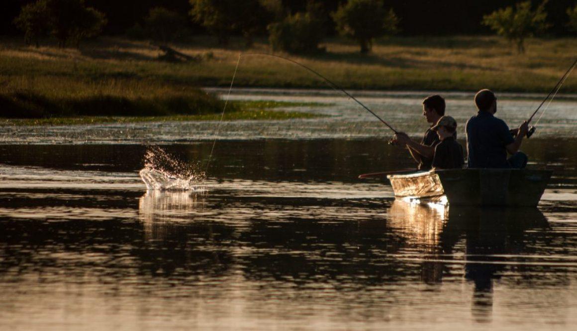 bass lures summer