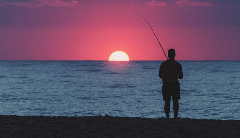 fish finder rig