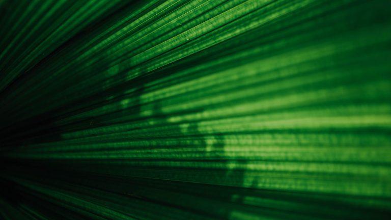 green blob light