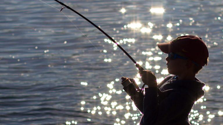 trout fishing reels