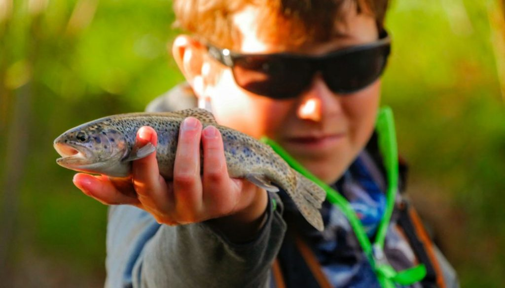 Bobber Fishing For Trout Learn The Basics Finn S Fishing Tips