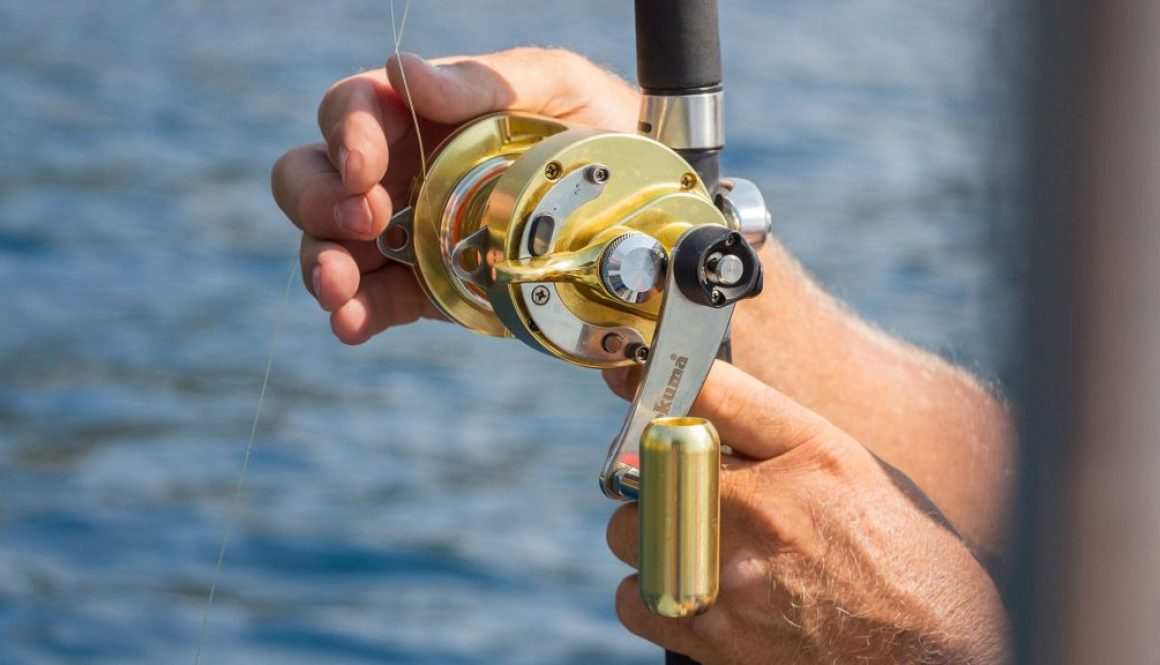 bottom fishing reels