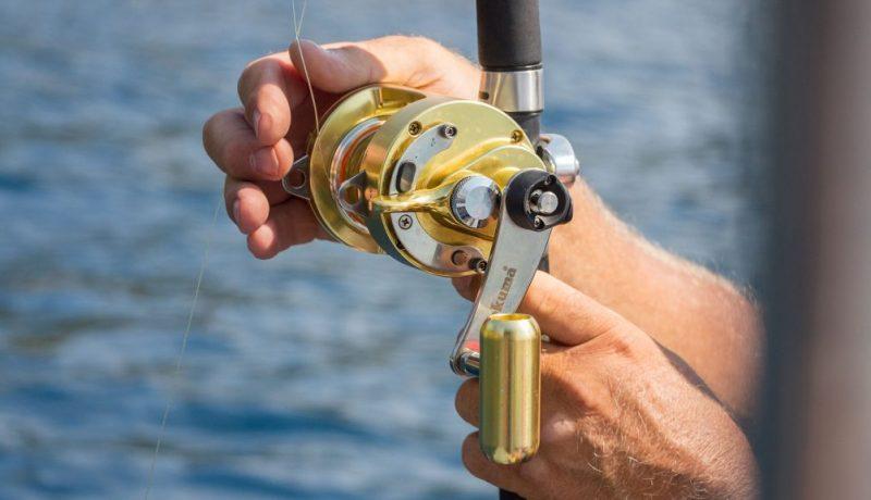 bottom fishing reels