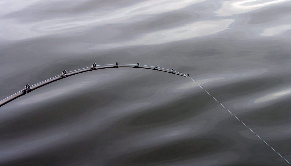 fluorocarbon for bass