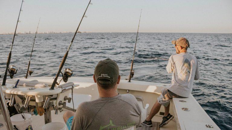 bluefish lures
