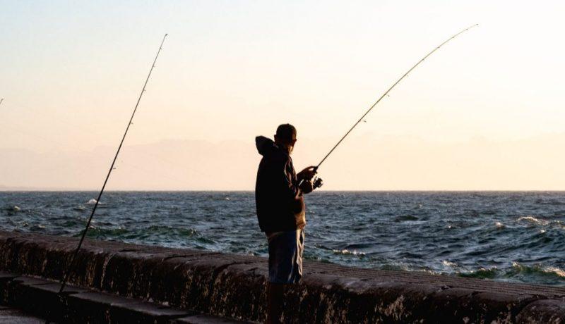 bubble rig mackerel