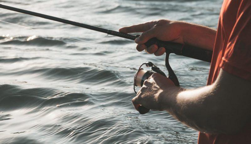 spinning reels under 50