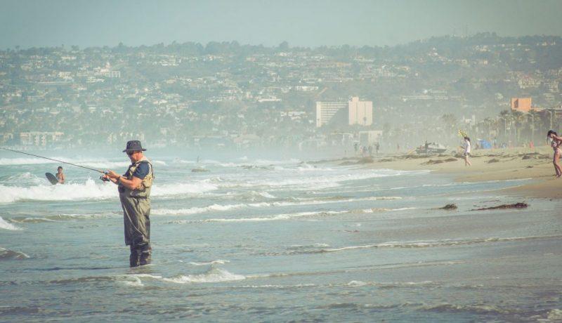 surf fishing bait