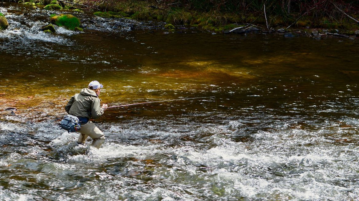 Best Spinners for Steelhead