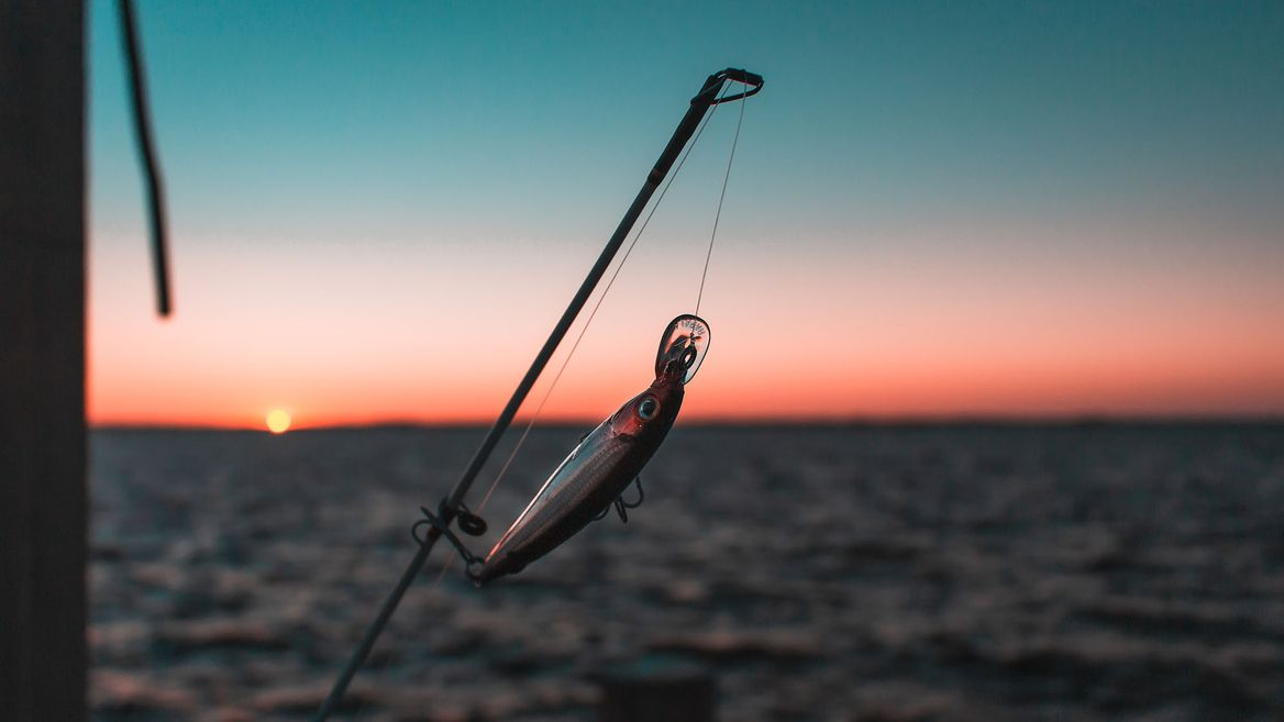 Best Pike Lures for Summer