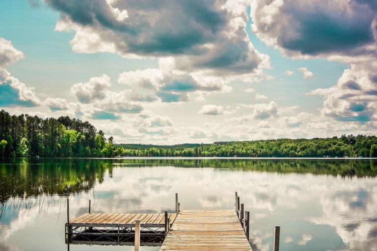 how to attract fish to your dock