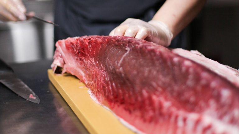 best bluefin tuna lures