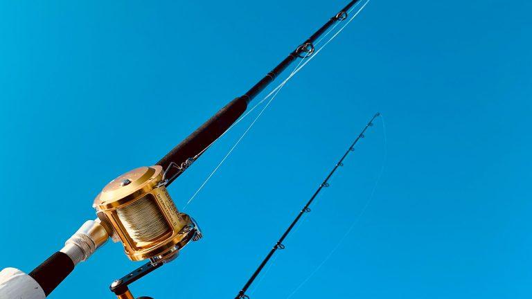 best bottom fishing rods