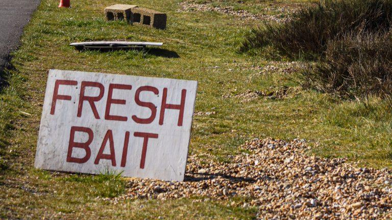best bait pumps