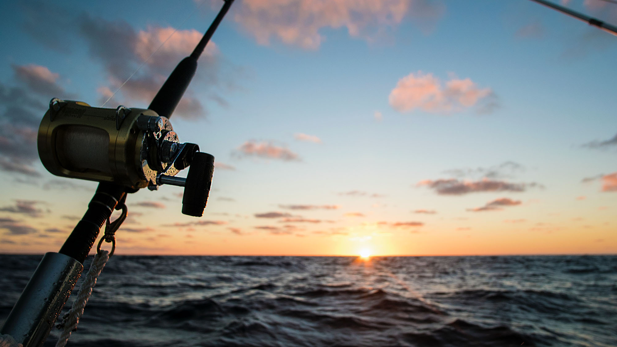 best rods for trolling