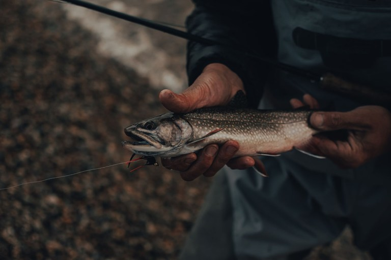 how to land a trout without a net
